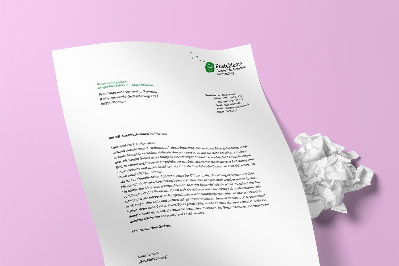 Corporate Design Potsdam Pusteblume Briefpapier