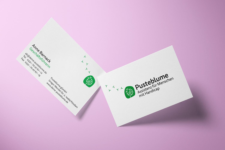Corporate Design Potsdam Pusteblume Visitenkarten